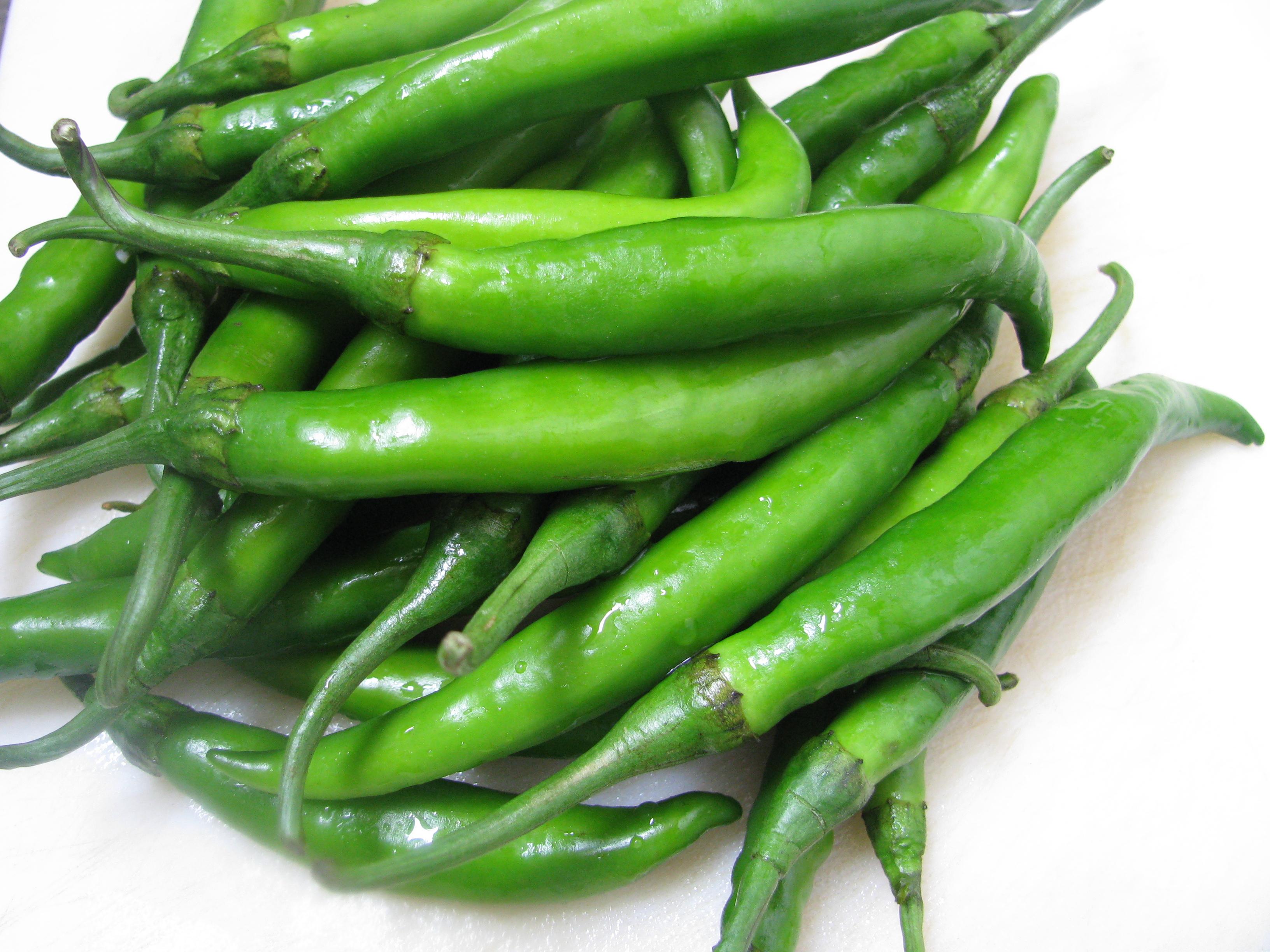 chilli oder chili